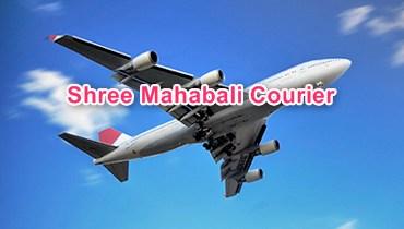 Shree Mahabali Courier Tracking